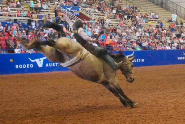 Bulls, Blood and Business: Disrupting the Dang Ol' Rodeo