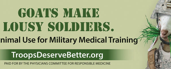 Billboards Throughout San Antonio Urge Army To End Use Of Animals In Medic Training