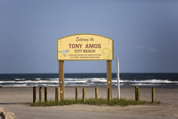 News Roundup: Report Shows High Rate Of Water Pollution At Texas Beaches