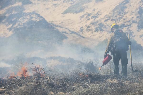 The Pentagon Says Wildfires, Driven By Climate Change, Are A Growing National Security Threat