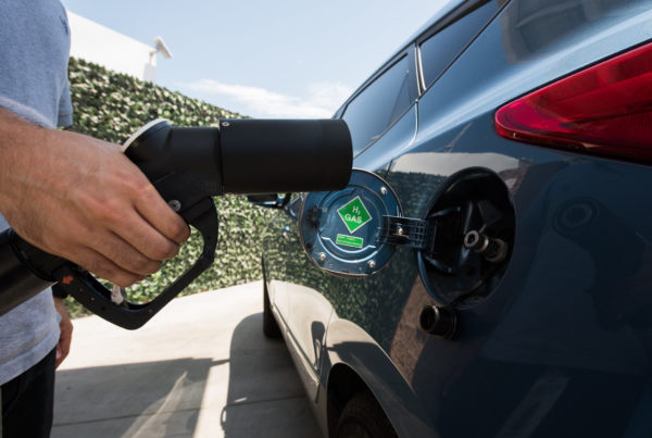 Hydrogen Fuel Could Be Texas' Next Green Energy Bonanza